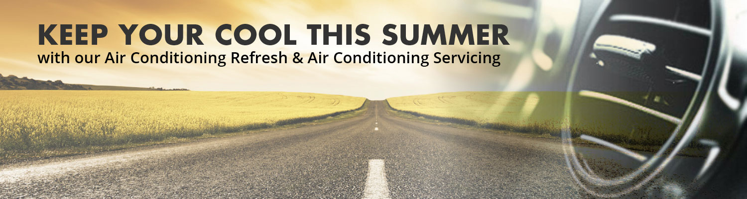 Air Con refresh and service